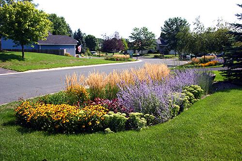 The Many Benefits of Rain Gardens - greenstrides ... Rain Garden Stormwater Design on rainwater garden design, rose garden design, rose landscape design,