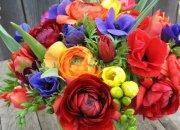 local-harvest-flowers.jpg