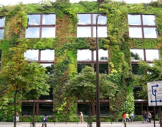 musee-du-quai-branlys-living-wall.jpg