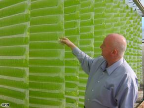 vertigro-algae.jpg